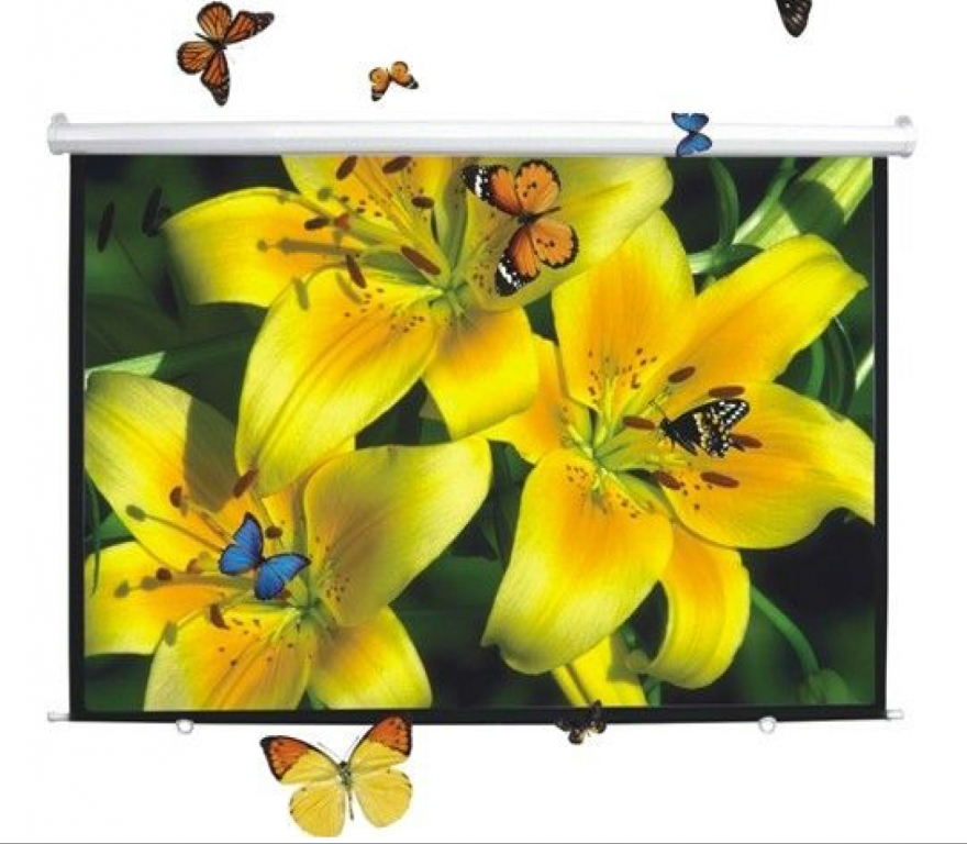 DigitMX DMX-PSM120.43 Manual Projector Screen 4:3 120'' 2.40x1.80